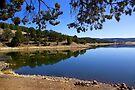Quemado Lake by Vicki Pelham