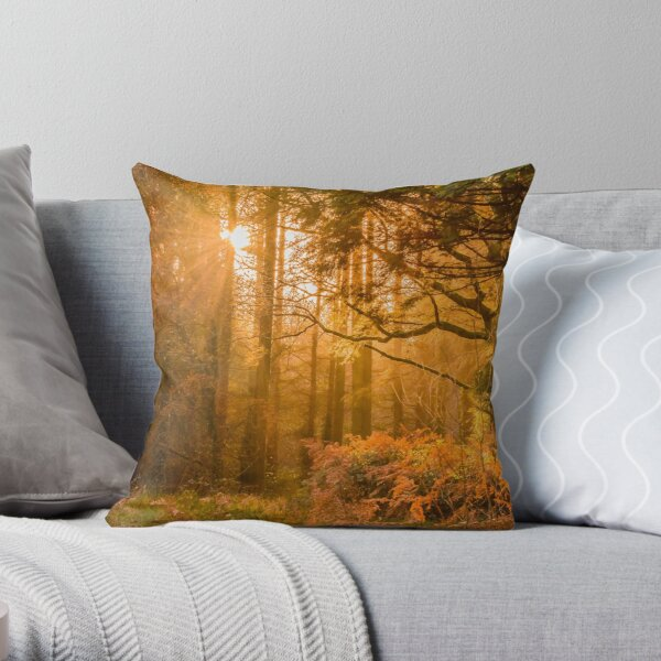 Autumn Forest Boreal And Maple Trees Wooden Area With Sunlight Passing Through The Red Orange Yellw Colored Trees In Falls Warm Color Tones Throw Pillow By Iresist Redbubble