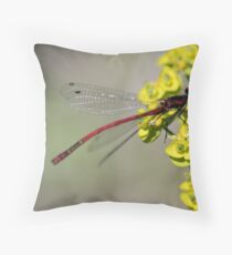 Red Damsel Fly Throw Pillow
