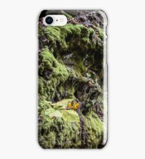 A Mossy Outcropping iPhone Case/Skin