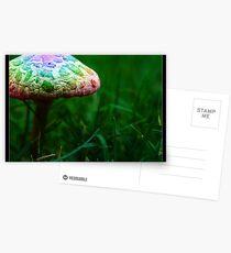 Magic mushroom Postcards