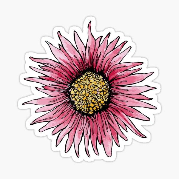 Pink daisy Sticker