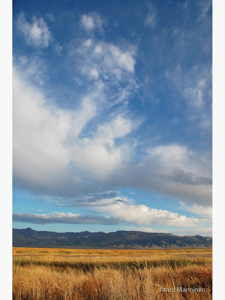The High Nevada Desert by JaredManninen