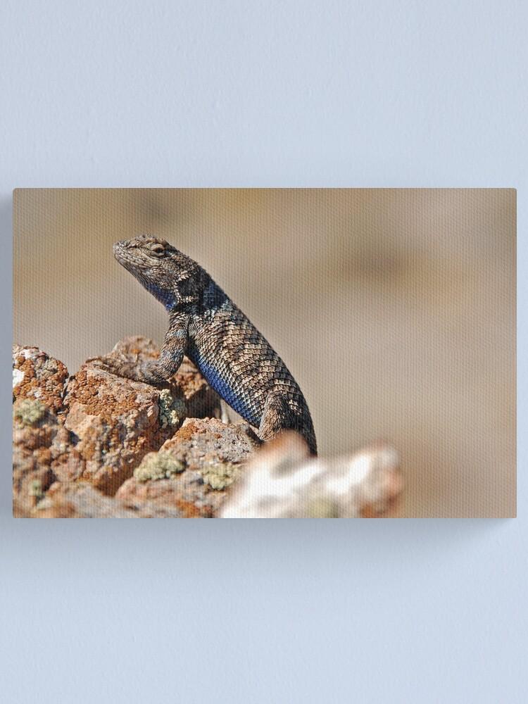 Alternate view of Nevada Lizard Canvas Print