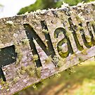 Aged Nature sign by yurix