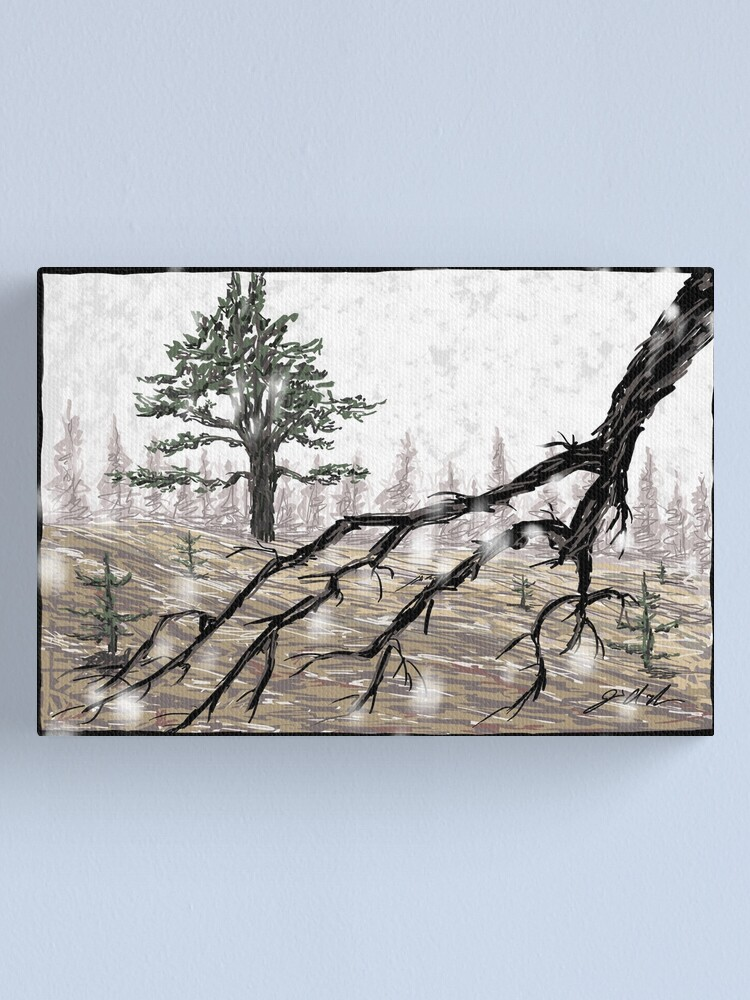 Alternate view of Snowy Washoe Meadows State Park Canvas Print