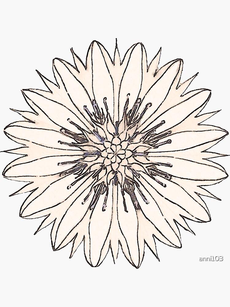 Cornflower by anni103