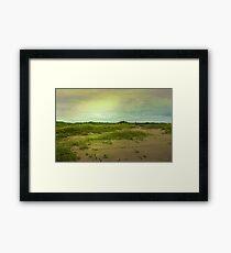 Morning in the Barrier Islands Framed Print