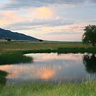 Placid Reflection by Arla M. Ruggles