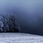 A Dark Blue Fog Morning by Angelika  Vogel