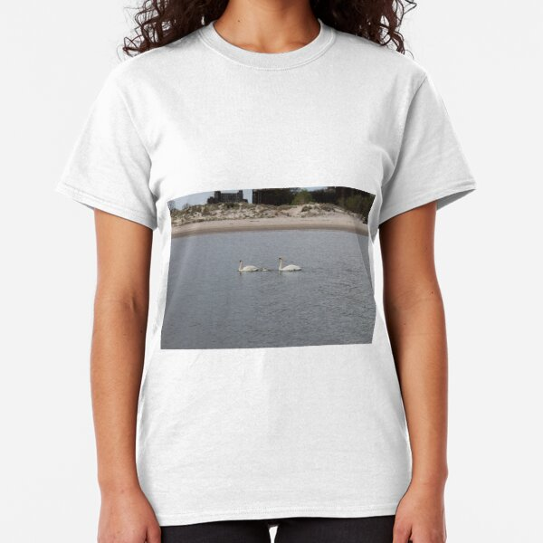 Swans, swan family, water, bay, morning, nature, the mystery of nature, #Swans, #SwanFamily, #water, #bay, #morning, #nature, #MysteryOfNature Classic T-Shirt