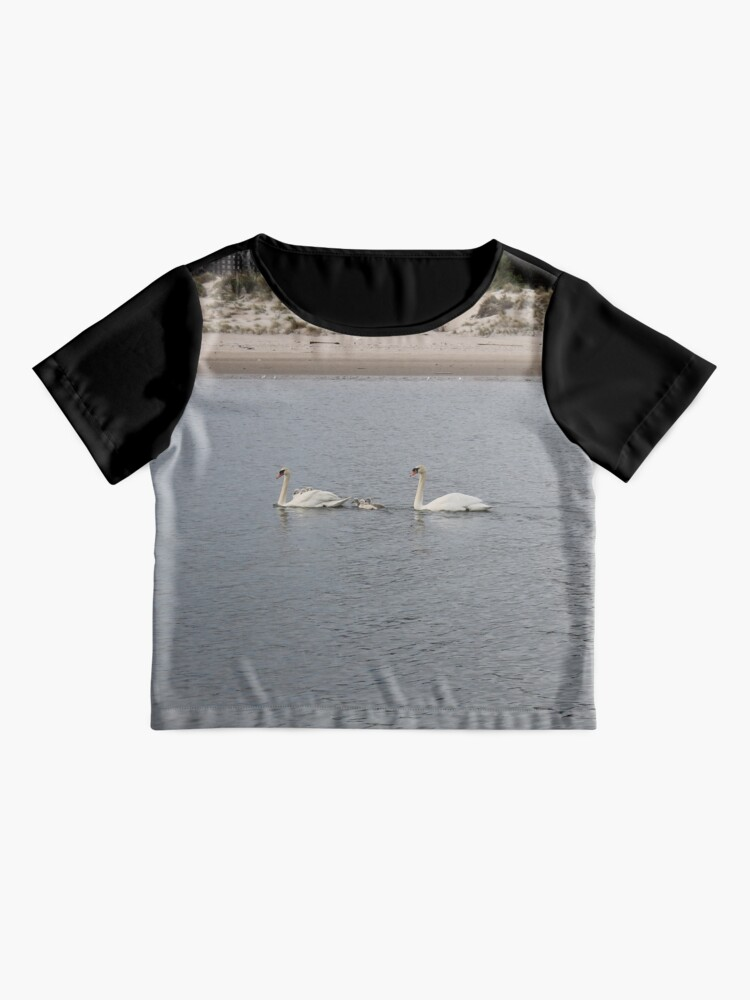 Alternate view of Swans, swan family, water, bay, morning, nature, the mystery of nature, #Swans, #SwanFamily, #water, #bay, #morning, #nature, #MysteryOfNature Chiffon Top