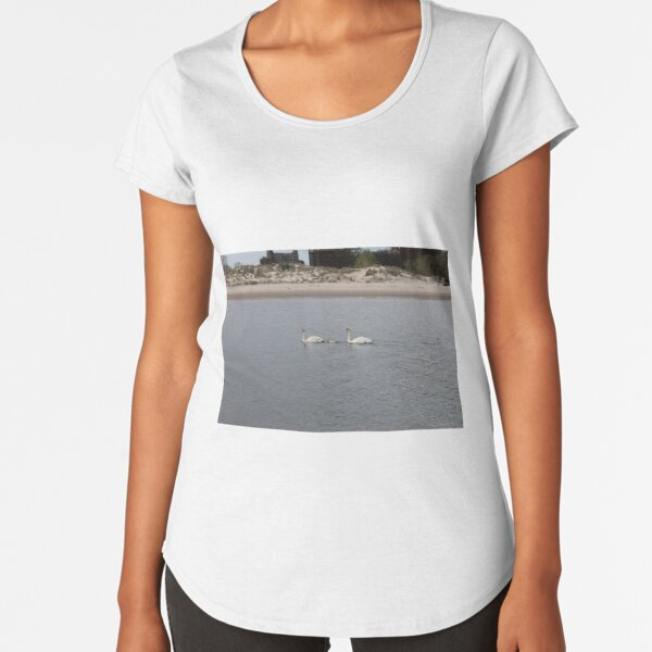 Swans, swan family, water, bay, morning, nature, the mystery of nature, #Swans, #SwanFamily, #water, #bay, #morning, #nature, #MysteryOfNature Premium Scoop T-Shirt