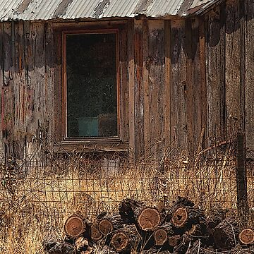 Rustic Cabin by Osso