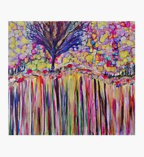 a single tree on a rainbow  cliff of love Photographic Print