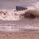 Cold Splash by Reesa