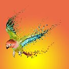 Paradise Bird by Lacerda