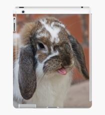 Rabbit Silly  iPad Case/Skin