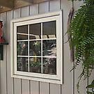 Kitchen Window by Bill Marsh