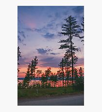 Tall pines sunset  Photographic Print