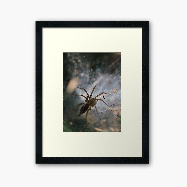 Spiders Lair Framed Art Print