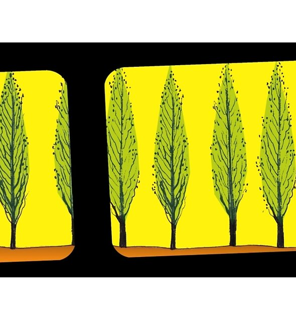 Poplars from a Train 2 by ArtOfMug