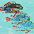 Three Fish by Steven Gibson