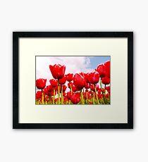 Tulip Fantasy Framed Print
