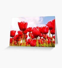 Tulip Fantasy Greeting Card