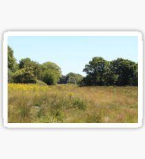 Rural Woodland Landscape Sticker