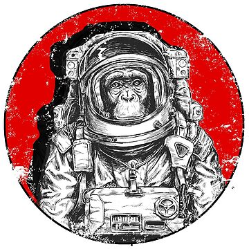 Monkey cosmonaut by alphaville