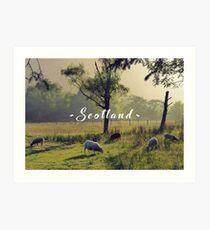 Summertime Scottish Scenery Art Print