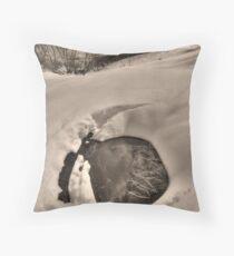 Bogong High Plains Throw Pillow