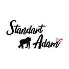 StandartAdam  by Malik M Beser
