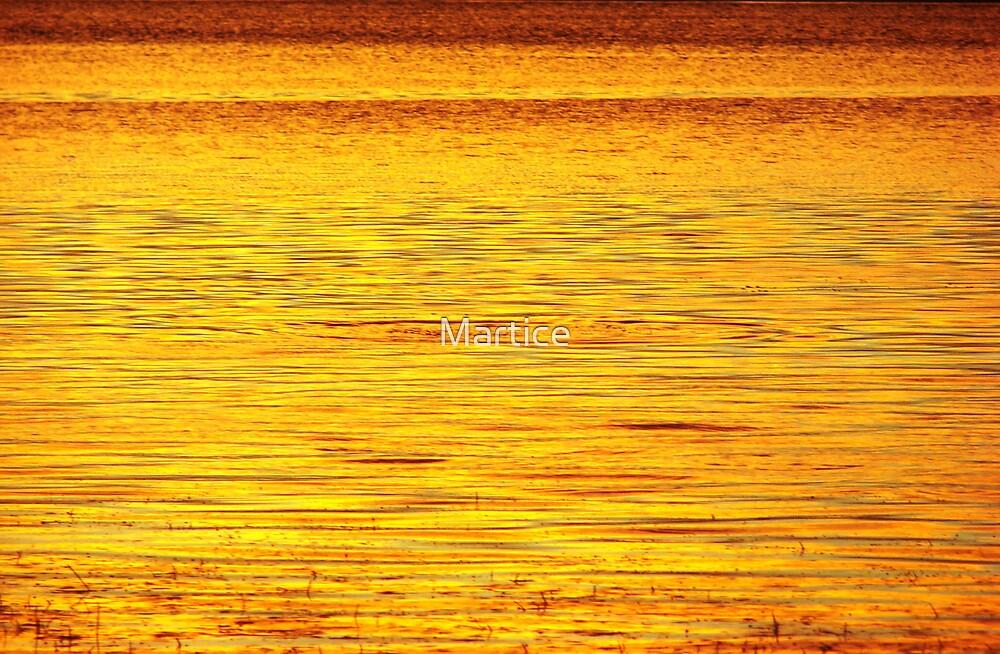 Golden Mullet Splash by Martice