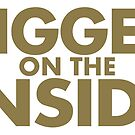 Bigger On The Inside by Incognita Enterprises