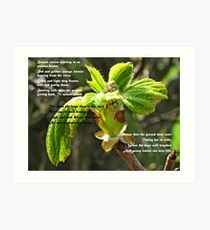 Russet Leaves Art Print
