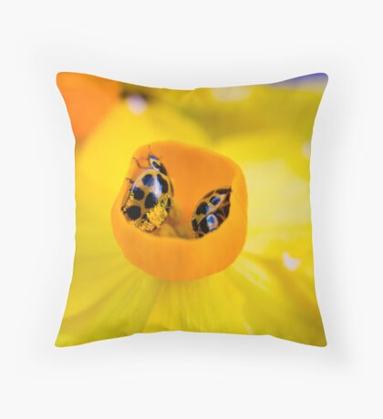 Ladybird Cup. Throw Pillow