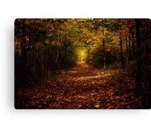 Quot Autumn In The Sacred Grove Quot By Dbwalton Redbubble