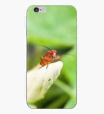 Red Soldier Beetle iPhone Case