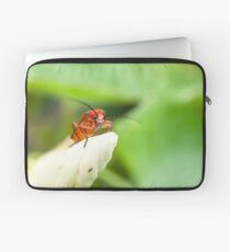 Red Soldier Beetle Laptop Sleeve
