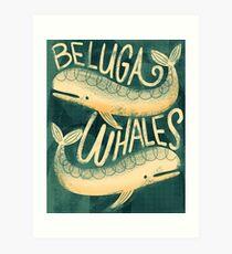 Beluga Whales Art Print