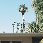 California Vibes by Eoxe