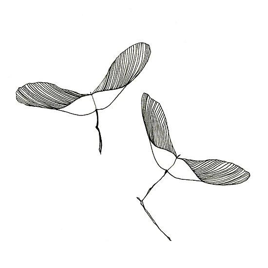Wings by Aleksandra Kabakova