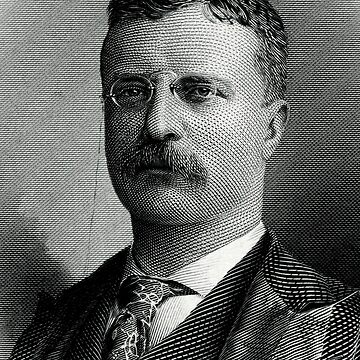 """Theodore """"Teddy"""" Roosevelt by IMPACTEES"""