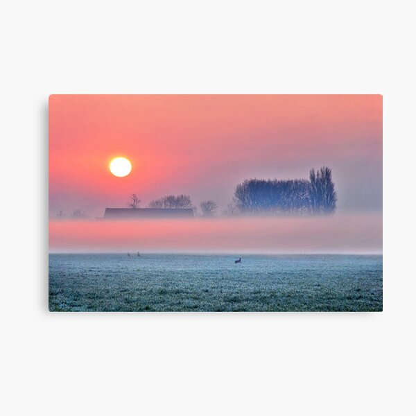 There he/she is........ Canvas Print