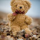Ted on Beach by Paul Bird