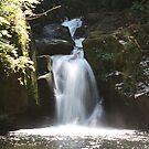 Sweet Creek Falls by Chappy