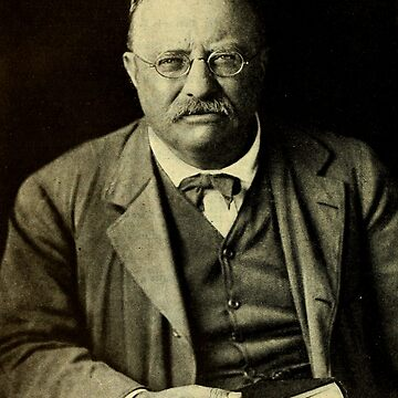 THEODORE ROOSEVELT 3 by IMPACTEES