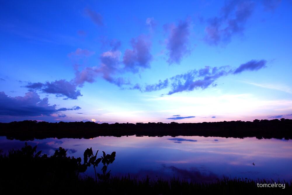 Amazon Sunrise by tomcelroy